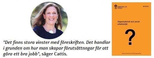 Arbetsmiljö Cattis med uttalande och föreskriften
