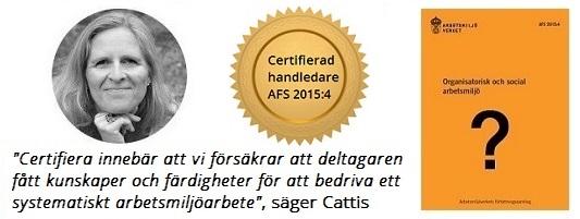 Psykosocial arbetsmiljö - handledare utbildning - certifiering AFS2015-4, Cattis uttalande