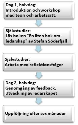 Lead Forward - modell för utbildningen, bild för WEB