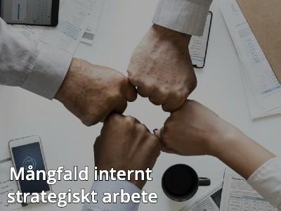 Mångfald-internt-strategiskt-arbete-onlineutbildning-arbetsmiljö-affärsutveckling-medarbetarskap