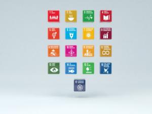 Hållbarhet och CSR - diplomerad onlineutbildning- VeaLearn