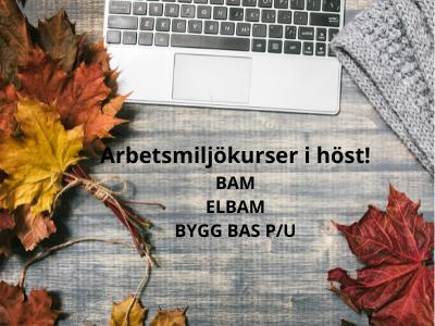 Nya webbutbildningar inom Arbetsmiljö - Vealearn utbildning